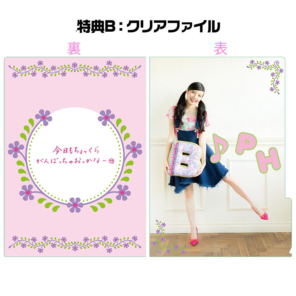 会報 vol.6 ~2012年★冬号~