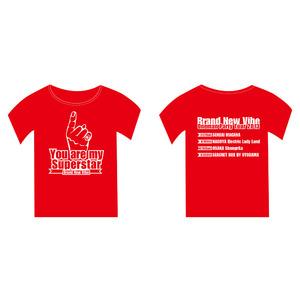 2013年ツアーTシャツ