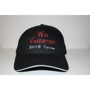 ウインバリアシオン号 2016 Year CAP