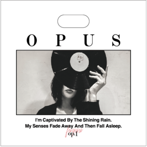OPUS レコードバッグ