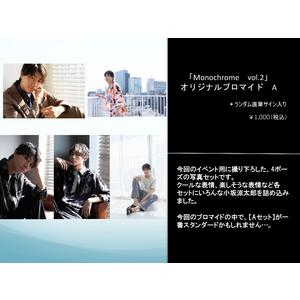 「Monochrome Vol.2」オリジナルブロマイド A