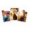 美弥るりか ポストカード3枚セット【A】